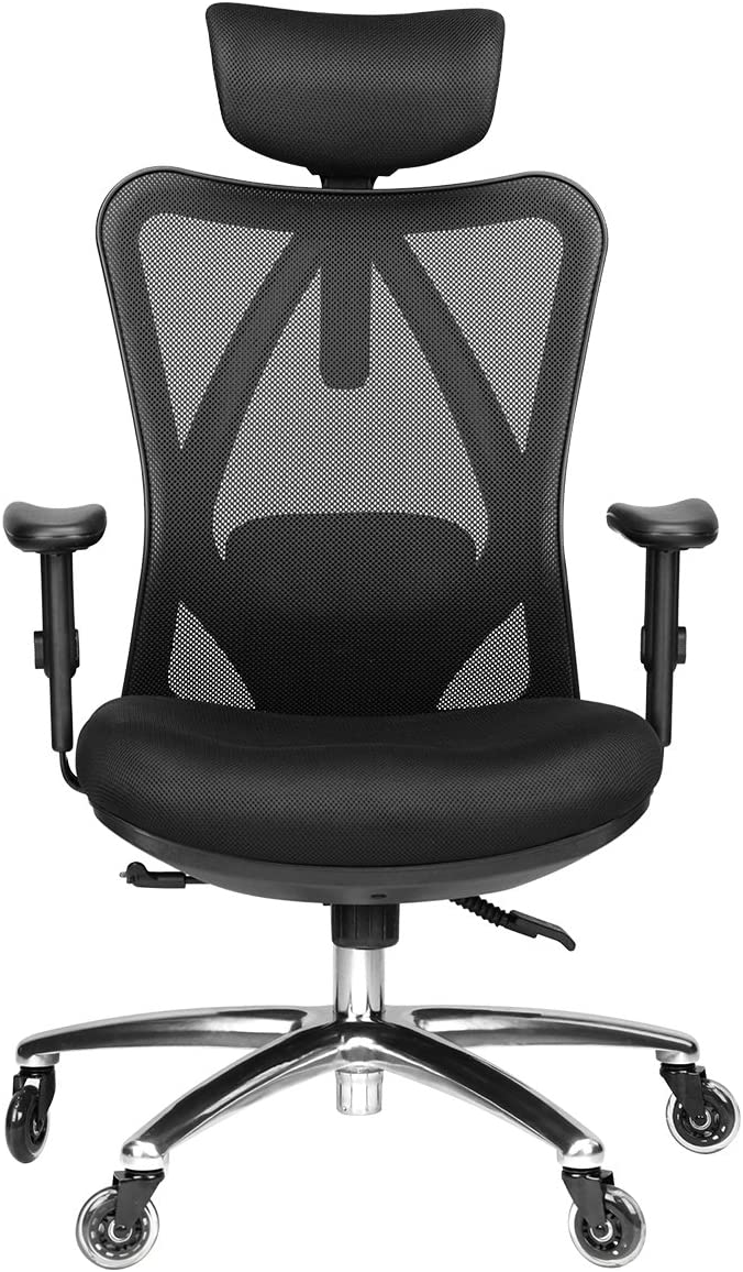 Duramont Adjustable Office Chair with Lumbar Support