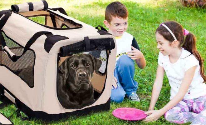 XXL Dog Crates
