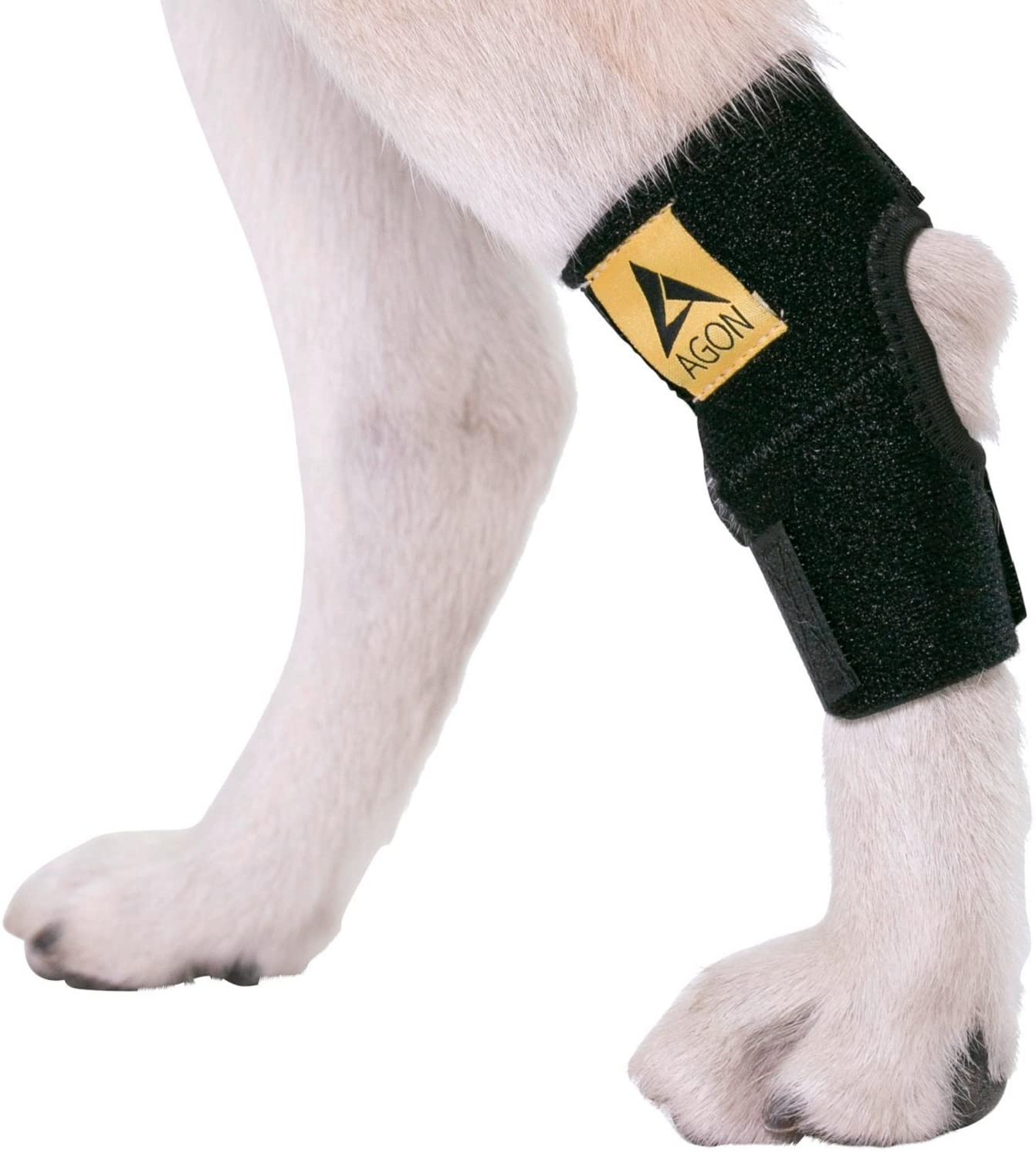 AGON Dog Canine Rear Hock Joint Brace