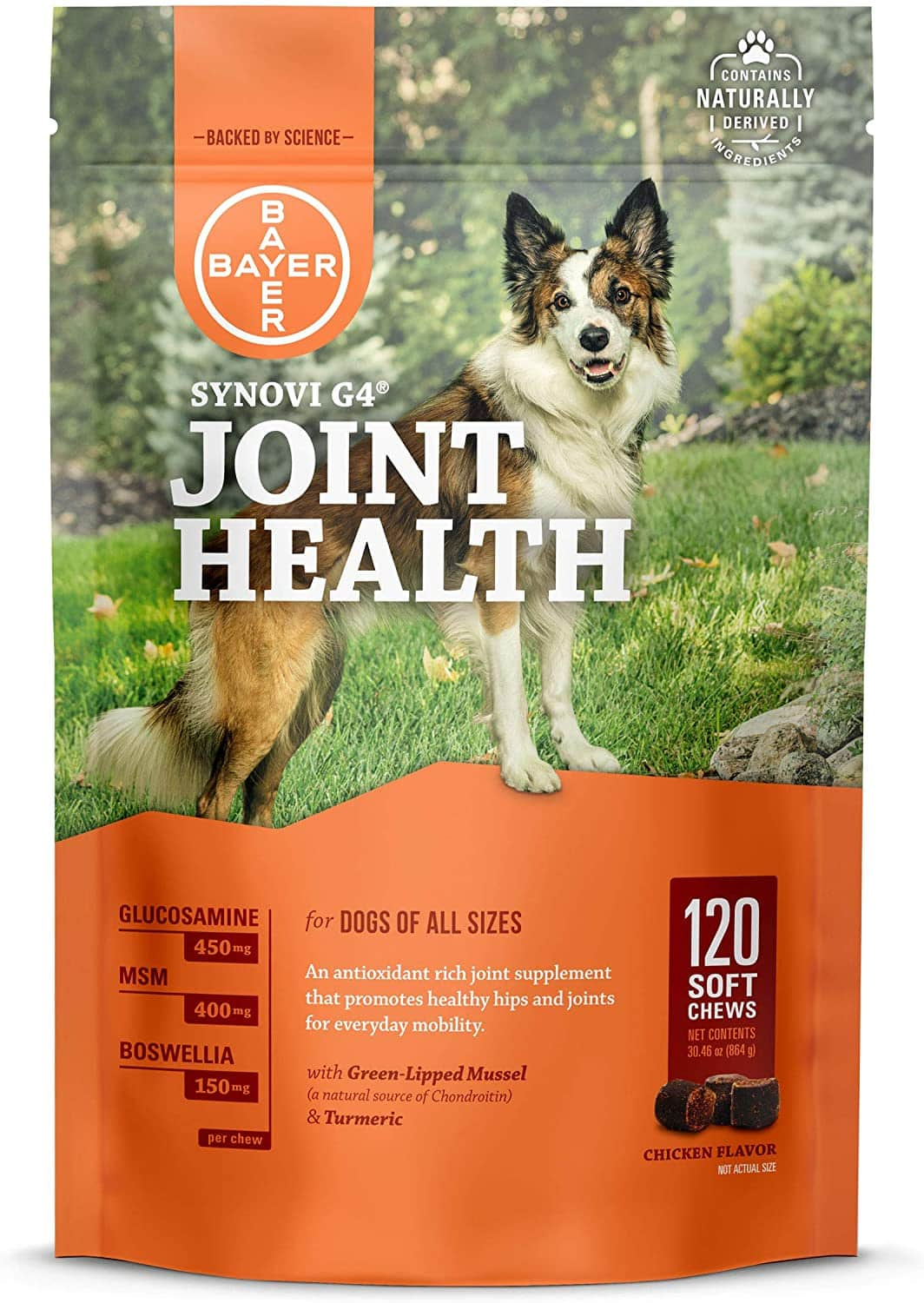 Bayer Synovi G4 Joint Supplements for Dogs