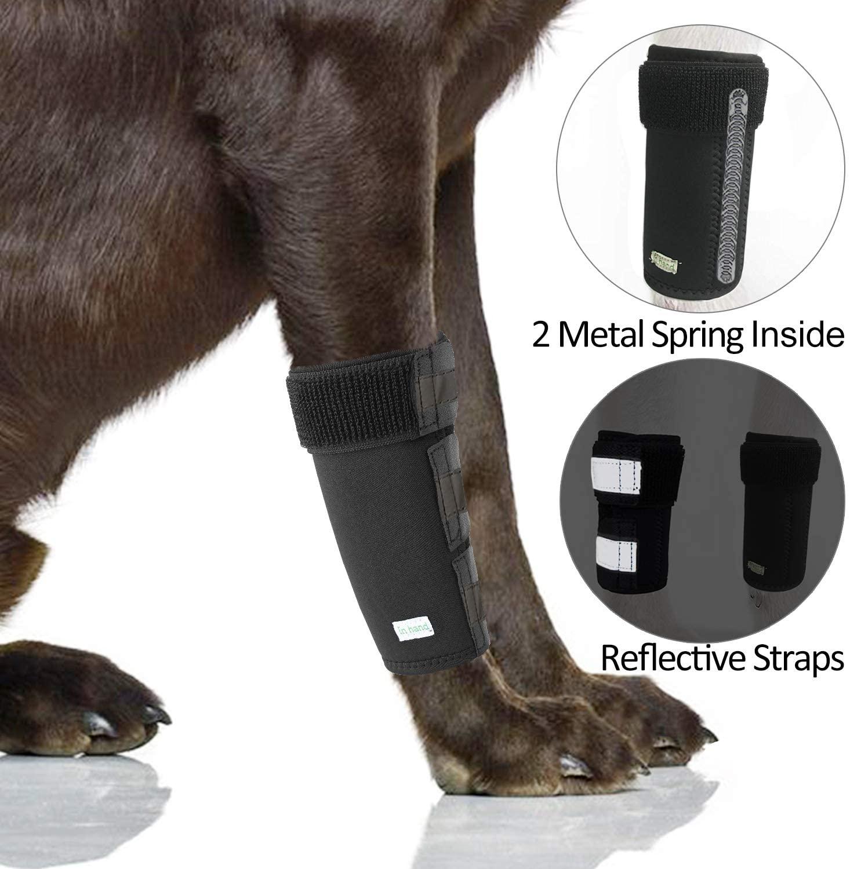 IN HAND Dog Leg Brace