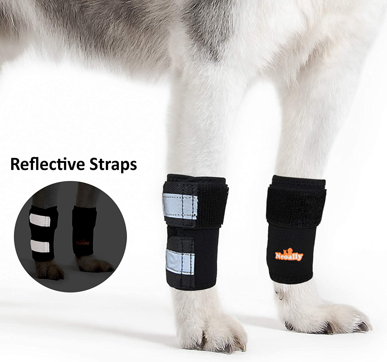NeoAlly Dog & Cat Front Leg Braces