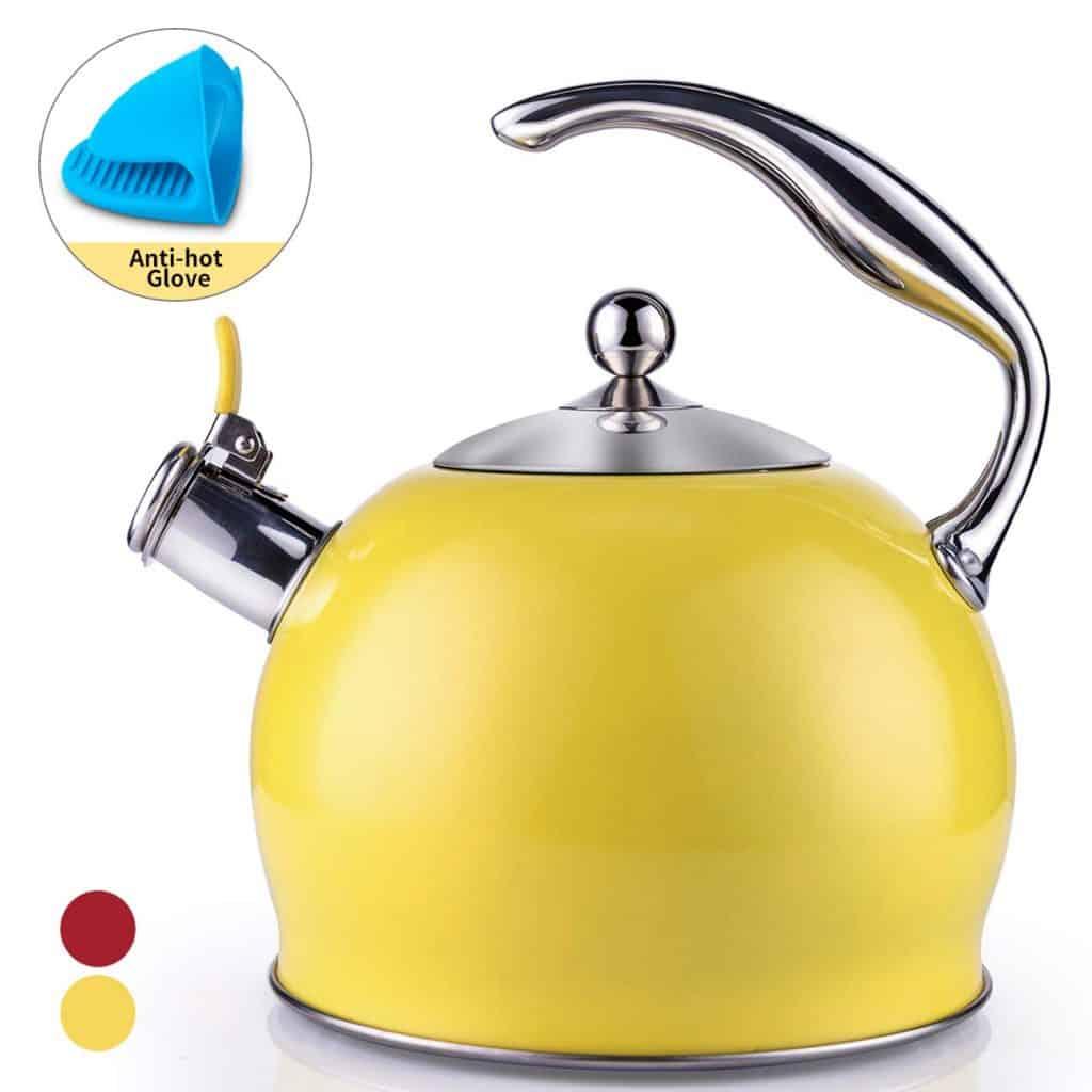 Sotya Stainless Steel Tea Kettle