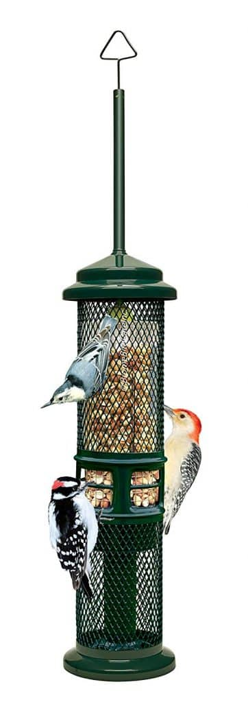 Squirrel Buster Peanut and Squirrel-Proof Bird Feeder